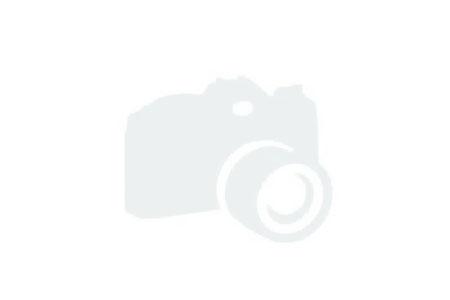 СЕЗОН 2013 г. продукти на Лимагрейн -Limagrain-, Линцер Агро -Linzer Agro- и други